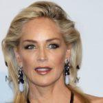 Sharon Stone ptrotagonizará la serie Agent X