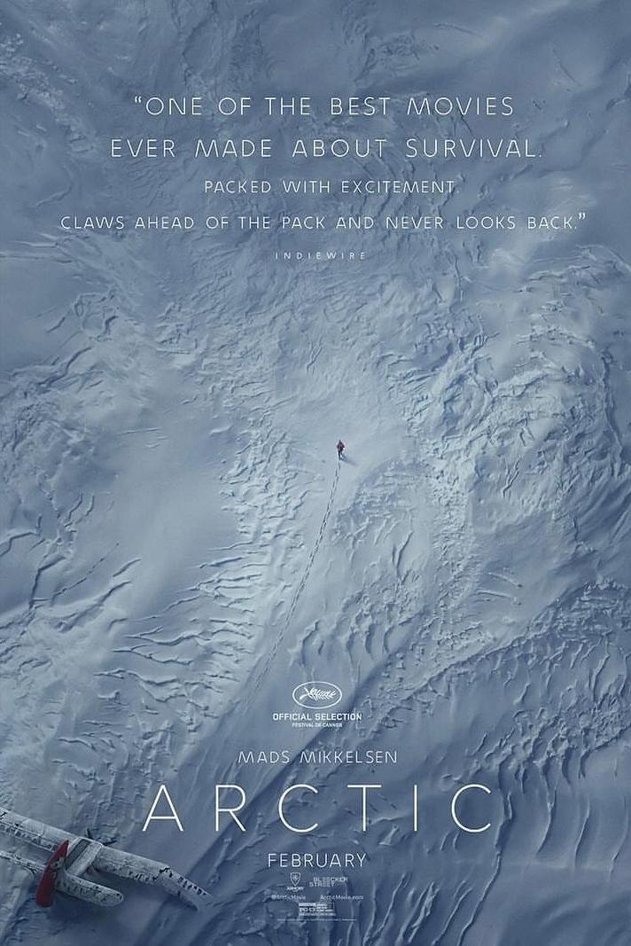 poster película arctic