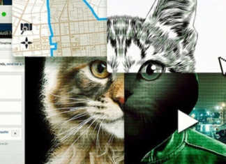 documental a los gatos ni tocarlos de netflix