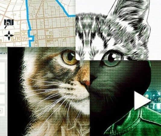 documental a los gatos ni tocarlos de netflix