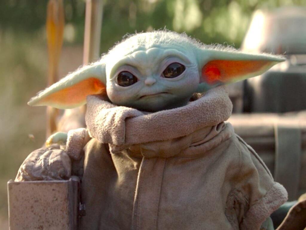 The kid, Baby Yoda